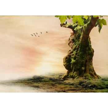 Ρομαντικό δάσος