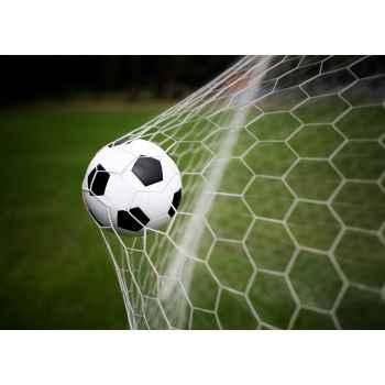 Μπάλα ποδοσφαίρου στα δίχτυα