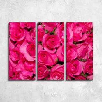 Ροζ τριαντάφυλλα - Τρίπτυχος πίνακας