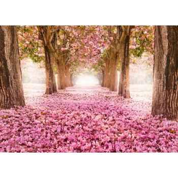 Ρομαντικό μονοπάτι με ροζ λουλούδια