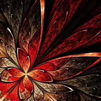 Όμορφο λουλούδι με κίτρινο και κόκκινο χρώμα