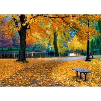 Δημόσιο πάρκο στην Βοστόνη