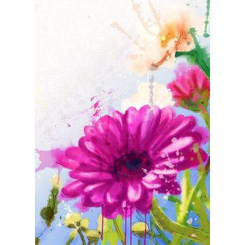 Λουλούδι Ζέρμπερα