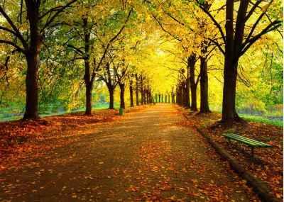 Φθινοπωρινό πάρκο