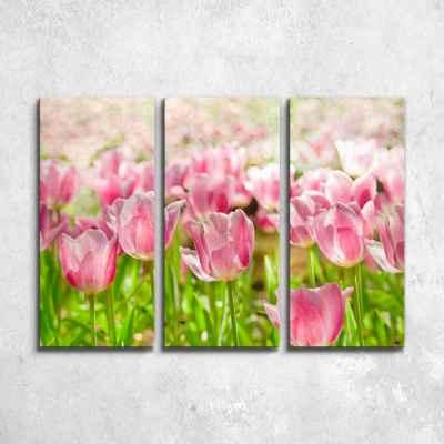 Όμορφες ροζ τουλίπες - Τρίπτυχος πίνακας