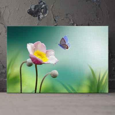 Ροζ ανεμώνη με όμορφη πεταλούδα