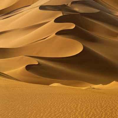 Αμμόλοφοι στη Σαχάρα