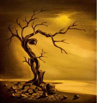 Νεκρό δέντρο σε ραγισμένο έδαφος