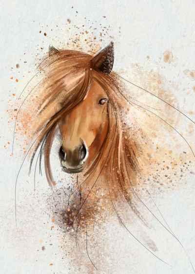 Αφηρημένο πορτρέτο αλόγου